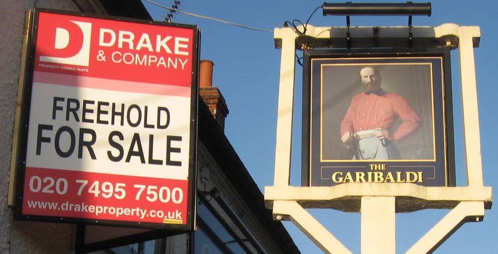 Garibaldi For Sale